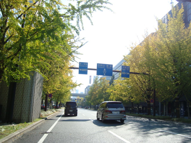 写真3(御堂筋) 大阪の街のご紹介写真