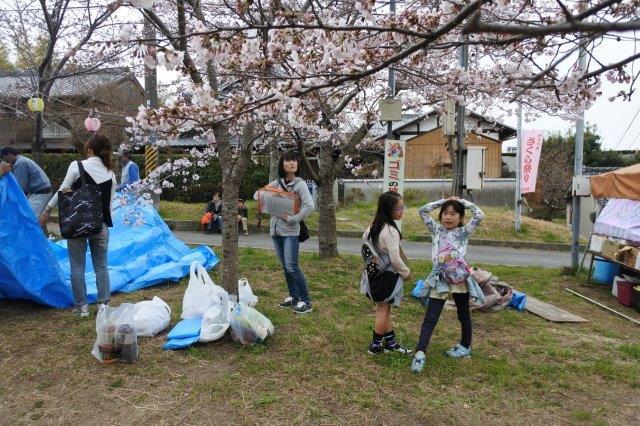 星田妙見宮(正式名:小松神社)の桜 4