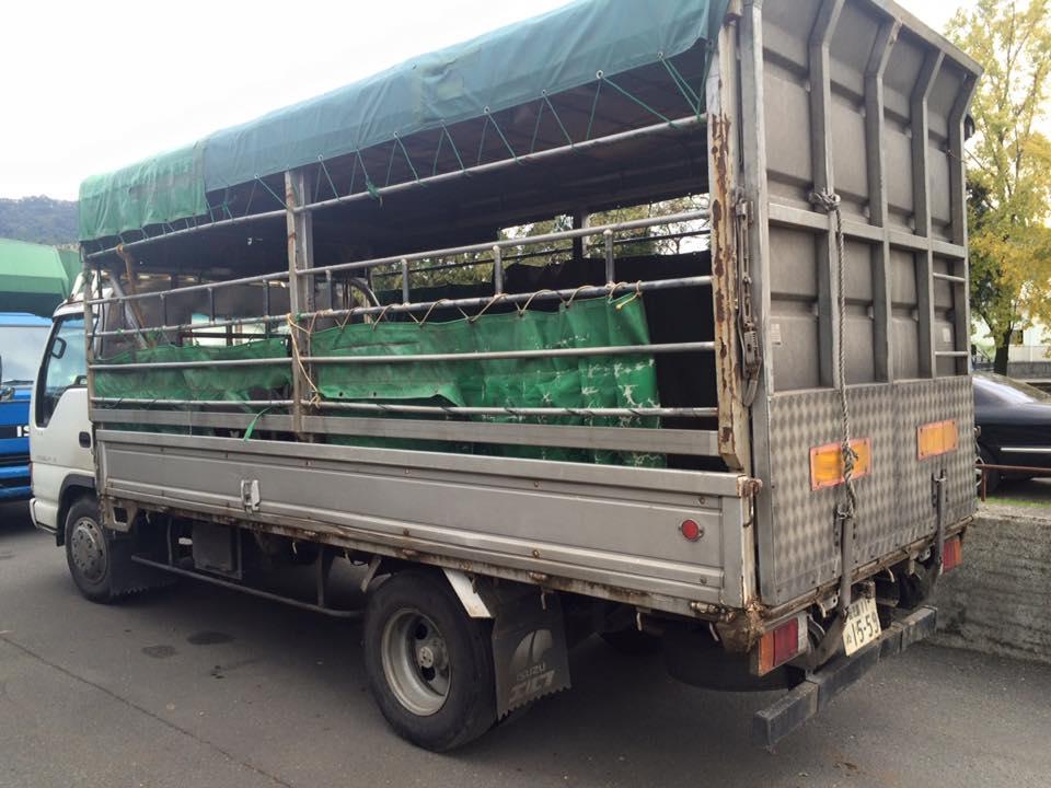 家畜運搬車の写真9
