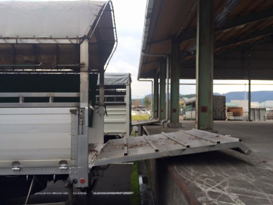 家畜運搬車の写真17
